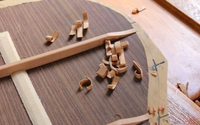 Advanced Luthiers Course
